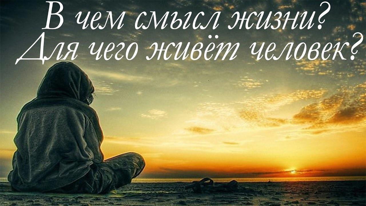 В чем смысл жизни ?